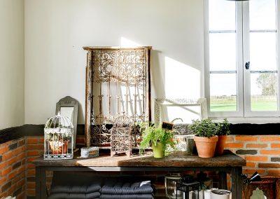 Cosy-side-cuisine-d-ete-jardin-d-hiver-coin-plantes